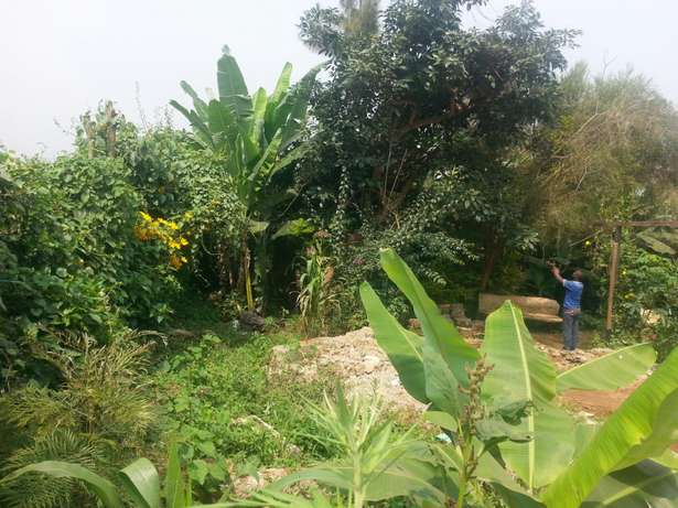 Residential plot for sale Ikinu - image 4