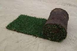 Turfland Grass(instant lawn)