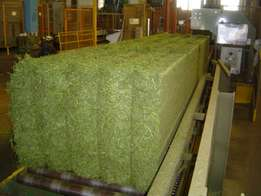 Lucern Bales Pellets for sale