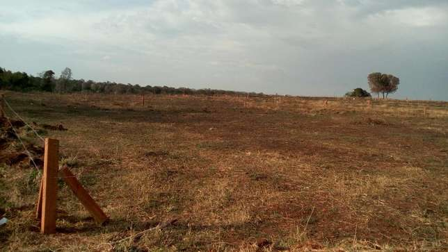 100 by 100 plots at Madiba Garden Nyaribo - image 2