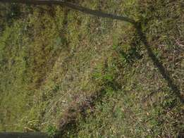 Prime 1/2 acre for residential