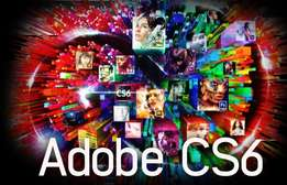 archicad, adobe, antivirus, games,windows and many more softwares.