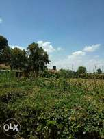Land kesses moi university 12 acres good for home 800k per acre