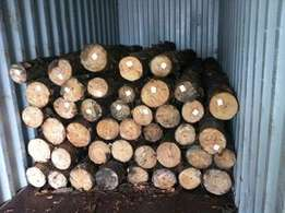 Wooden Poles New / Hout Pale Nuut