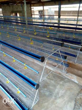 Galvanized local fabricated cages Ijebu Ode - image 4