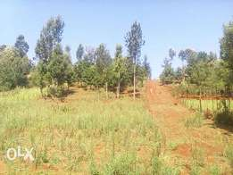 2 acre land for sale