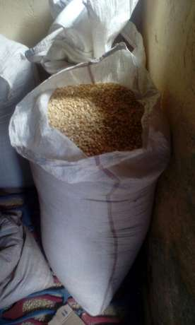 90 Kg bag of maize Maili Saba - image 3