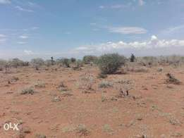 """Five Acre land for sale in Ilngarooj close to """"Ngong blossom"""""""