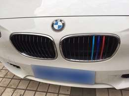 BMW 1 series F20/F21 , 3 color grill inserts (for 11 beam grill only )