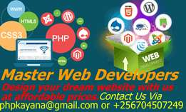 Website developing,designing,marketing,hosting and maintaining.