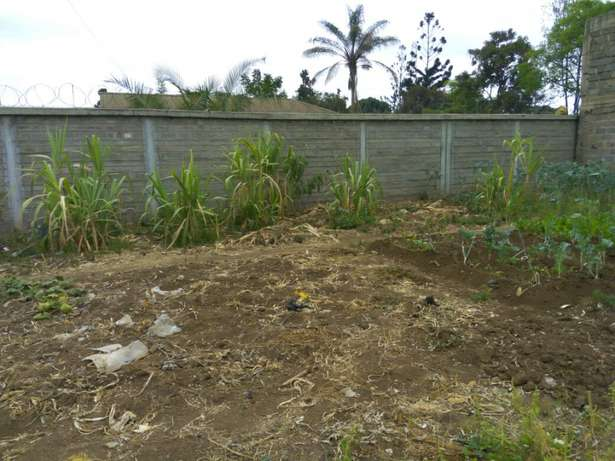 lands,plots and properties agent Limuru Town - image 5