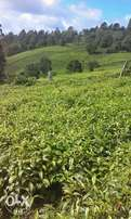2acres for sale in meru county