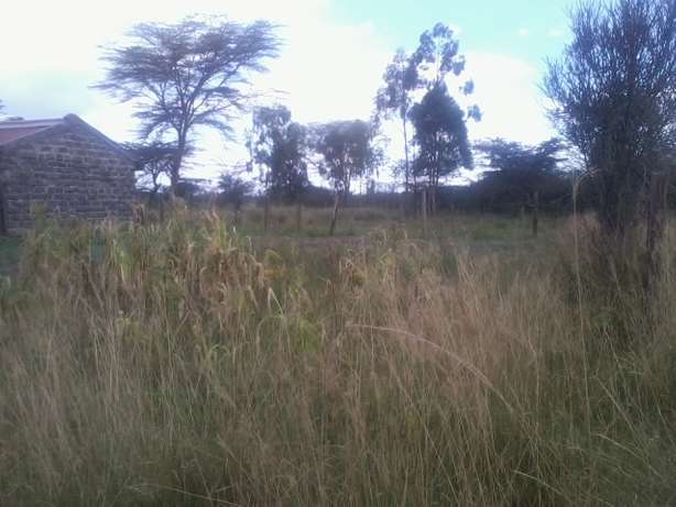 2 adjacent 1/8th acre vacant plots for sale behind Laikipia Campus Nakuru East - image 3
