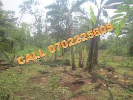 Dynamic acre for sale in Sonde-Bukerere at 40m