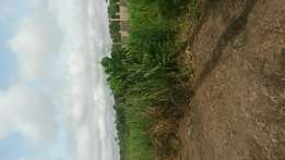 Full one plot for sale at Apromase near oduom..St louis Shs