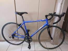 Schwinn Road bike / Bargain