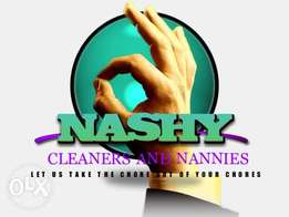 Cleaning and Domestic service