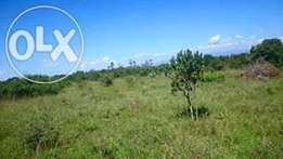3.5 Acres in Kimuri, Nanyuki