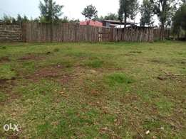 Plot for sale in Ngata (quick sale)