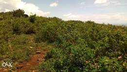 Land for sale in Riat hills kisumu