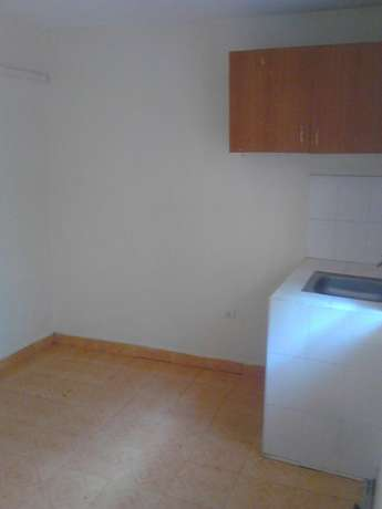 One bedroom with un open kitchen Ruaka - image 3