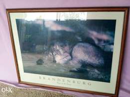 Picture Frame with Wolf Print
