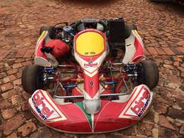2011 Birel 125 GP Kart