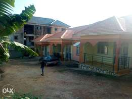 Charming three bedroom house is available for rent in Kira