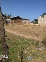 40X80 plot at Thikas Kiganjo Estate with certificate at 650K