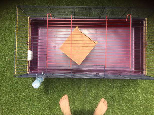 Large cage for small animals Pretoria East - image 2