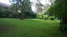 Plot for sale in Riara Rd half acre