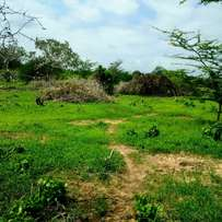 This magnificent plot nestled in a 1/4 acre in vipingo