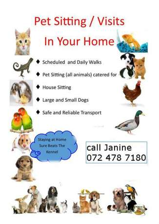 House sitting...dogs..plants Pretoria East - image 1