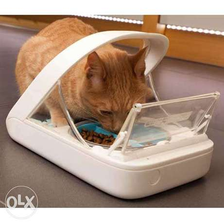SureFeed Pet Feeder cats and small dogs