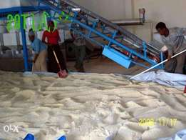 Sesame Cleaning and Peeling Machine