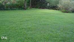 1/2 an acre for sale in red hill limuru road