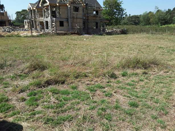 Quarter (1/4) Acre land in Ngong - Kerarapon Ngong Township - image 2
