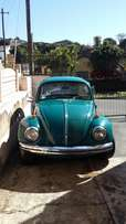 1969 vw beetle for sale R24000