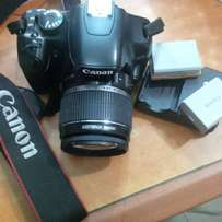 Canon Rebel XSI / 450D With Two Batteries
