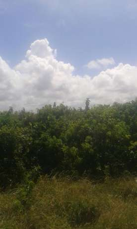 For sale.VIPINGO beach plot. 1 ACRE. 100% HOT property North Coast - image 1