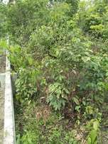 2 Plots Of Land For Sale At Rumuchiorlu Eneka Portharcourt