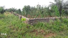 200ft by 100ft land for sale