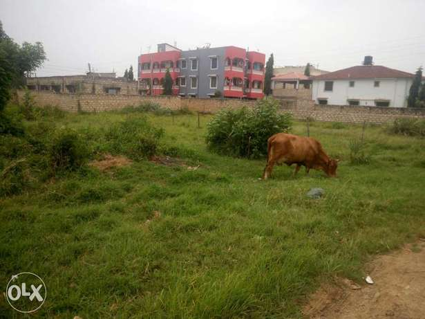 Plots for sale in afast developing Bamburi area with clean title deeds Nyali - image 5