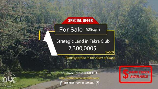 Prime Location Land Inside Fakra Club with AMAZING VIEW أرض في فقرا