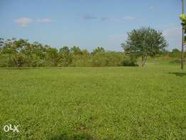 One acre land Kitusuru