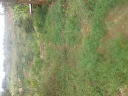 Land for Sale. 1.3acres of land in maragua mbombo.