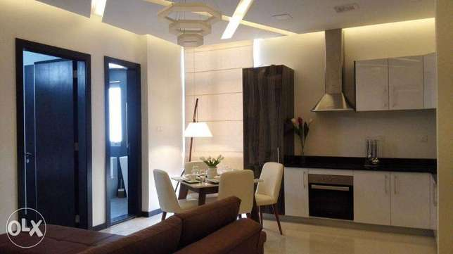luxury stylish 1 b/r fully furnished apartment