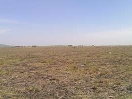 Prime plots for sale in Malili township