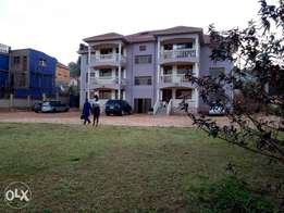 Modern executive two bedroom apartment house for rent in kireka 650k