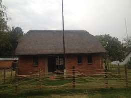 2 bedroom thatch roof cottage pet friendly available midrand